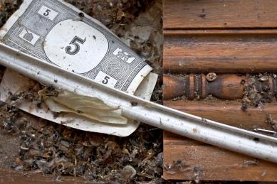 bugmash_money_68